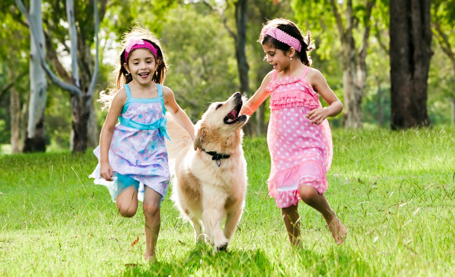 Kids Playing with Dog in Yard